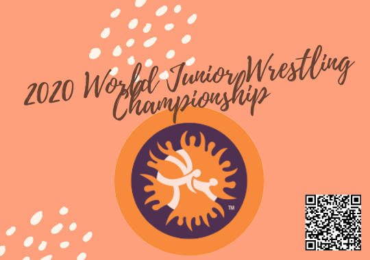 world wrestling championship